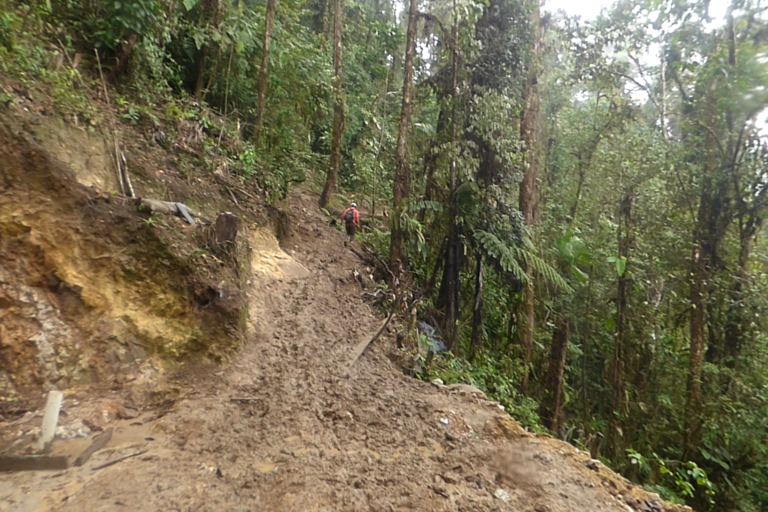 Impactos ambientales sobre el bosque Junín. Foto: DECOIN.