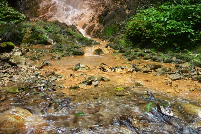 Desde 2016 ya se pueden apreciar los impactos de la contaminación del agua en la región de Intag. Foto: William Sacher.