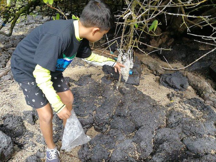 Uno de los jóvenes que participó de una jornada de limpieza de playas y manglares el 28 de julio pasado, en la isla Santa Cruz. Foto: Parque Nacional Galápagos