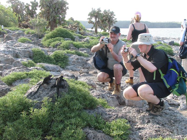 Turistas fotografiando iguanas de tierra en Galápagos. Foto: NH53 - Flickr.
