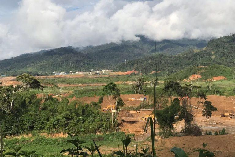 La minería ha acabado con cientos de árboles nativos en un sector que permanecía virgen. Foto: Carlos Medina.