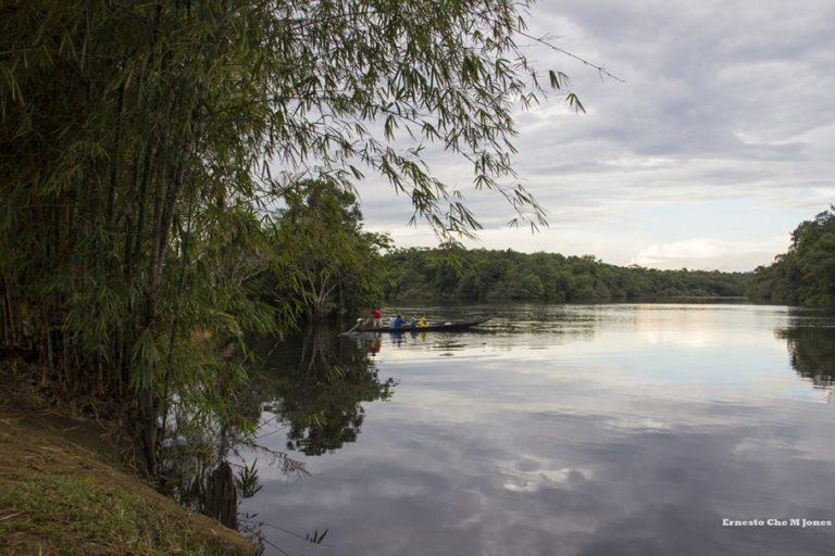 Vista desde las selvas amazónicas del departamento de Vaupés. Foto: Ernesto Che Mercado.