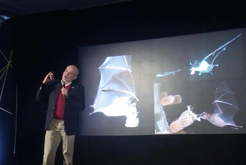 Rodrigo Medellín recorre el mundo enseñando sobre su trabajo en la conservación de los murciélagos y de la biodiversidad del planeta. Foto: Archivo personal Rodrigo Medellín.