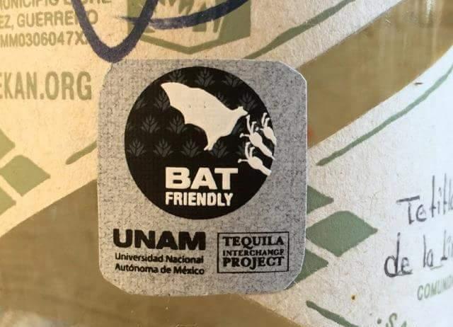 El tequila batfriendly es un proyecto que une la producción de tequila con la polinización del agave que ejecutan los murciélagos. Foto: UNAM.