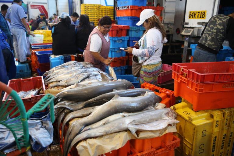 Los tiburones se venden como tollo en los mercados. Foto: Oceana.
