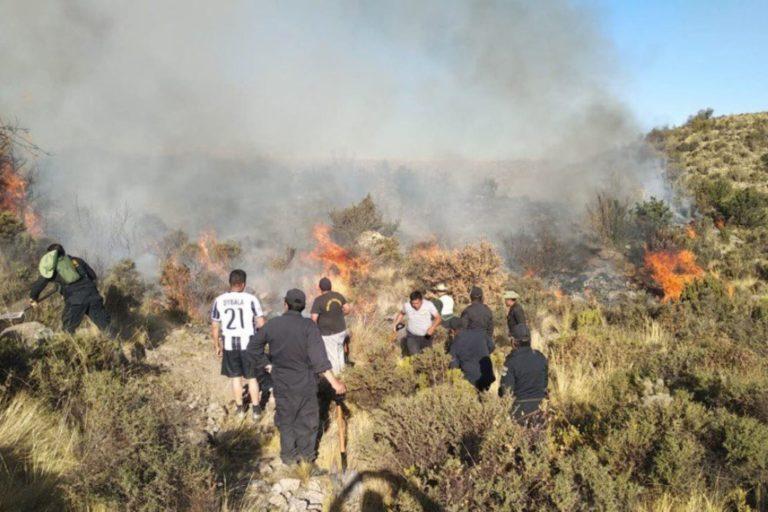 Bomberos, personal del ejército, policías y pobladores se movilizaron para detener el incendio ocurrido en el límite entre Moquegua y Arequipa. Foto: Agencia Andina.
