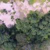 Una foto aérea tomada por un drone sobre la concesión minera 'Paolita II', que es una de las que permite campos de experimentación y reforestación. Foto: Cincia.