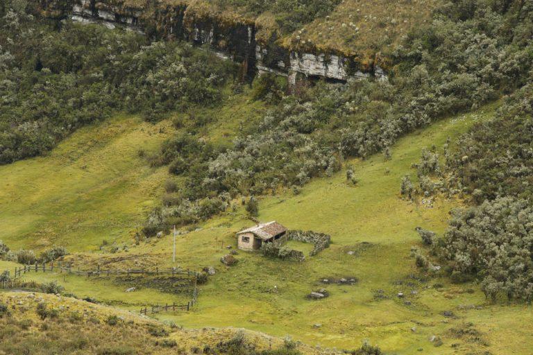 Cerca de 6500 personas viven y desarrollan actividades de agricultura, ganadería y minería en él Páramo de Pisba. Foto: Daniel Reina Romero- Semana Sostenible.