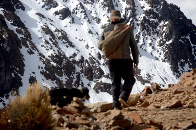 Paulino, acompañado de sus perros, camina en el abra Jahuaycate, donde es visible la pérdida de la nieve. Foto: Yvette Sierra Praeli.