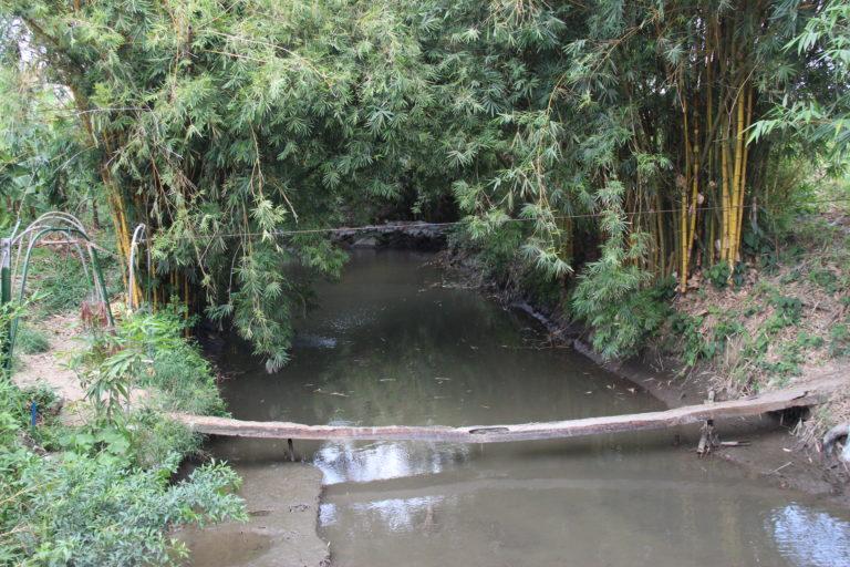Quebrada que baja de la Sierra Nevada de Santa Marta en el sector de la vía a la vereda Candelaria en el municipio de Zona Bananera. Foto: Alejandro Ballesteros.