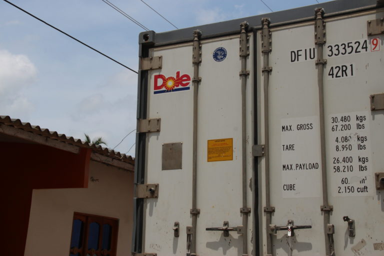 Capacidad de carga de muchos de los camiones que transportan el banano una vez es cosechado. Foto: Alejandro Ballesteros.