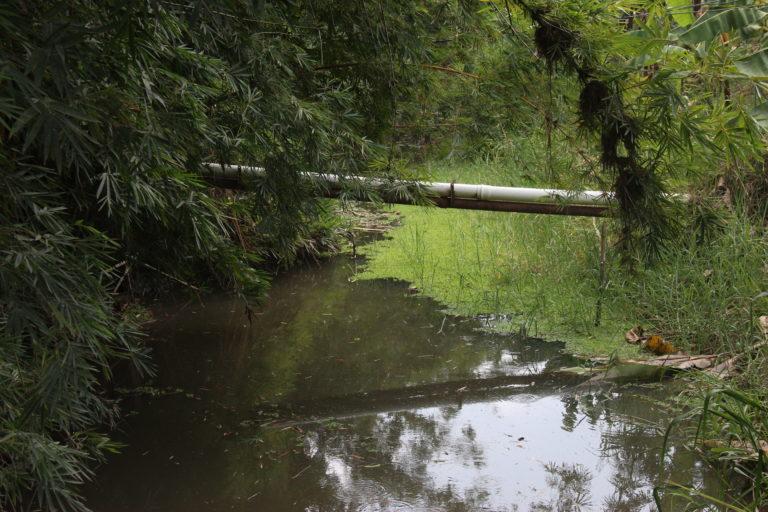 Río que baja de la sierra nevada de Santa Marta en el sector de la vía a la vereda Candelaria en el municipio de Zona Bananera. Foto: Alejandro Ballesteros.