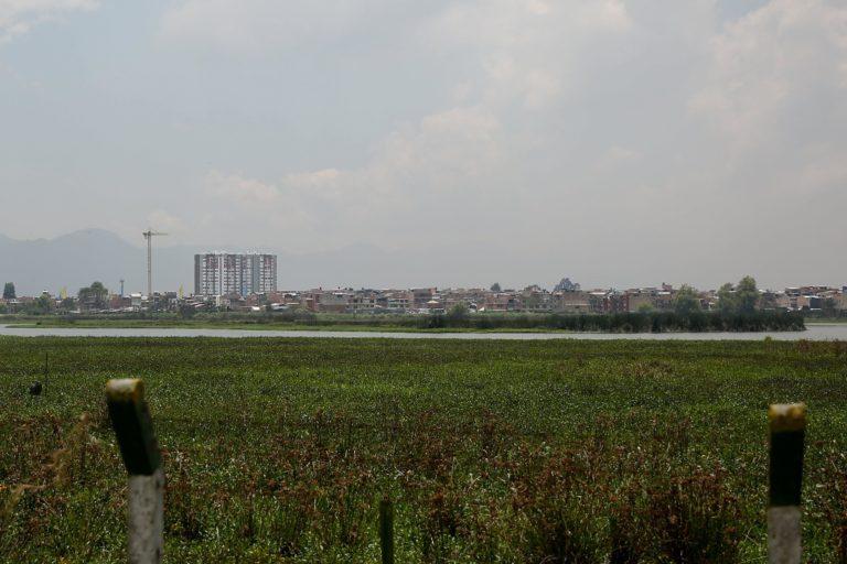 El humedal Jaboque se encuentra en el occidente de Bogotá, muy cerca al aeropuerto internacional El Dorado. Foto: DADEP.