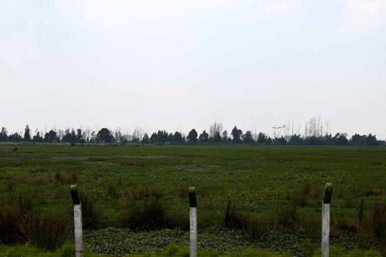 Jaboque es un lugar de paso para cientos de aves migratorias. Foto: DADEP.