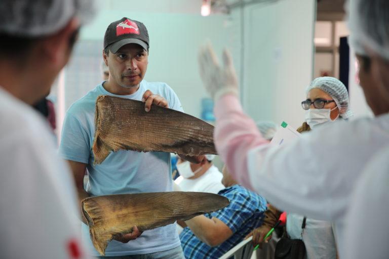 El chileno Sebastián Hernández es un biólogo marino que lidera la lucha contra el tráfico ilegal de aletas de tiburón. Foto: Oceana