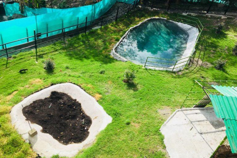 La adecuación del lugar donde vive ahora el hipopótamo Raymi costó cerca de 45 millones de pesos, incluye un pozo de lodo y una piscina natural. Foto: Fundación Zoológico Santa Cruz.