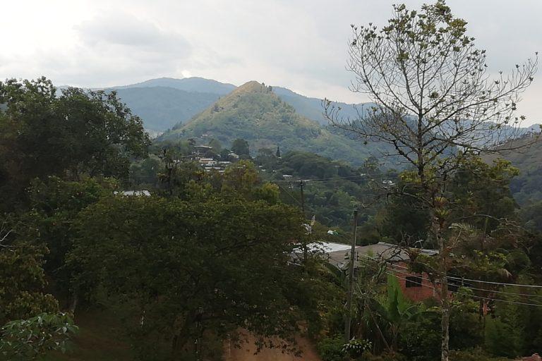 El Parque Nacional Natural Farallones es el área protegida continental más grande del suroccidente de Colombia. Alberga 540 especies de aves y es el lugar donde nacen más de 30 ríos que abastecen esa región. Foto: Lorena González.