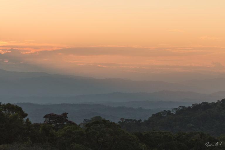 Parque Nacional Madidi. Foto: WCS.