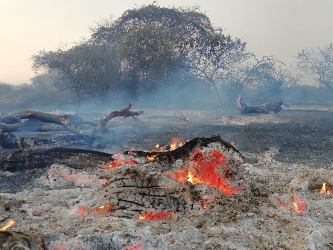 En incendio en en Santuario Histórico Bosque de Pómac se extendió por diez días. Foto: Ejército del Perú.
