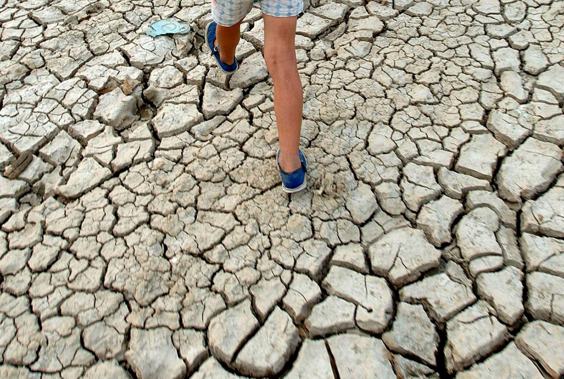 En Colombia se teme que la llegada de El Niño agudizará las sequías. Foto: Agencia Andina.