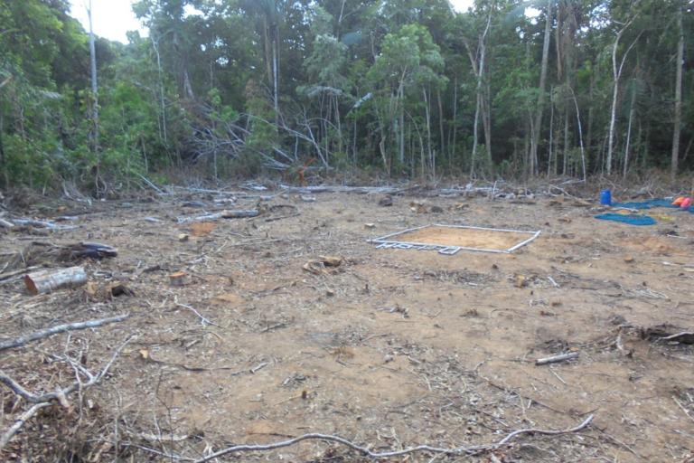 Espacios deforestados dejaron los campamentos instalados en la Amazonía boliviana. Foto: Monitores Socioambientales.