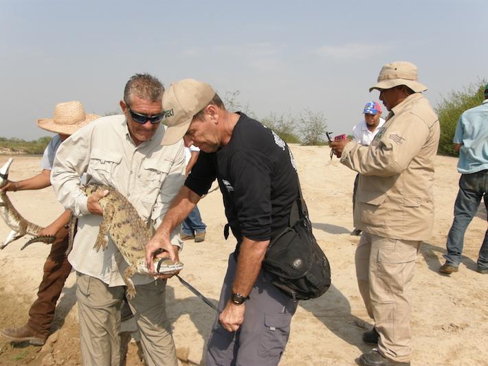 La Guardia Nacional se encarga de la protección ambiental de las zonas de liberación. Foto: Fudeci.