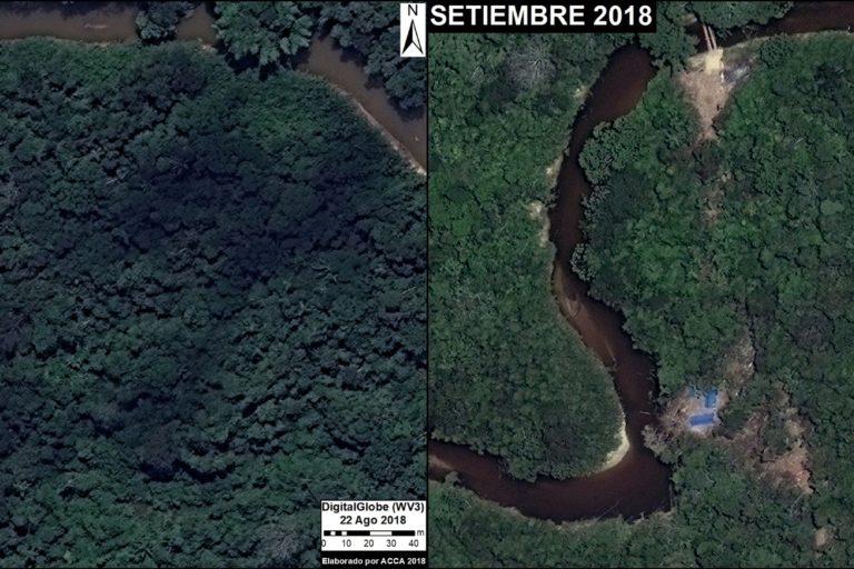 Imágenes del mismo sector de la selva muestran, con un mes de diferencia, el desbosque por la instalación de un campamento de tala ilegal. Fuente: DigitalGlobe / MAAP.