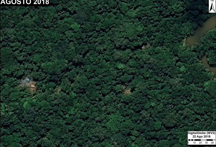 Campamento de tala ilegal. Fuente: DigitalGlobe / MAAP.