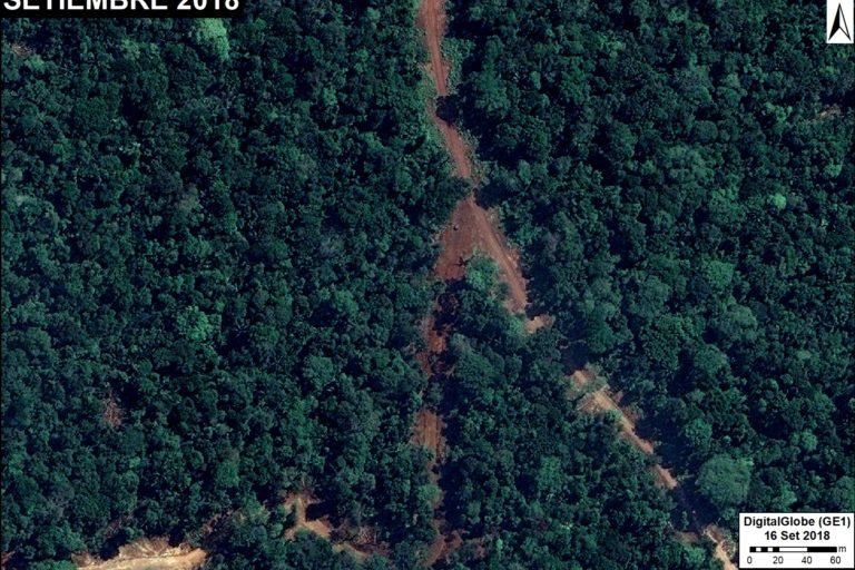 Imagen de deforestación del bosque en la región Loreto como consecuencia de un camino forestal habilitado. Fuente: DigitalGlobe / MAAP.