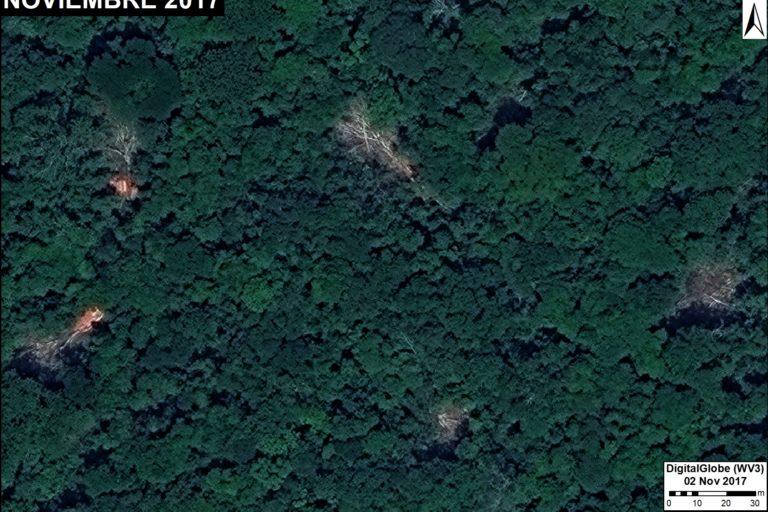 Desde el aire se observan pequeños sectores desboscados producto de la tala ilegal selectiva. Fuente: DigitalGlobe / MAAP