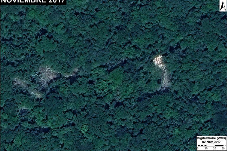 Sector del bosque donde se observa tala ilegal. Fuente: DigitalGlobe / MAAP
