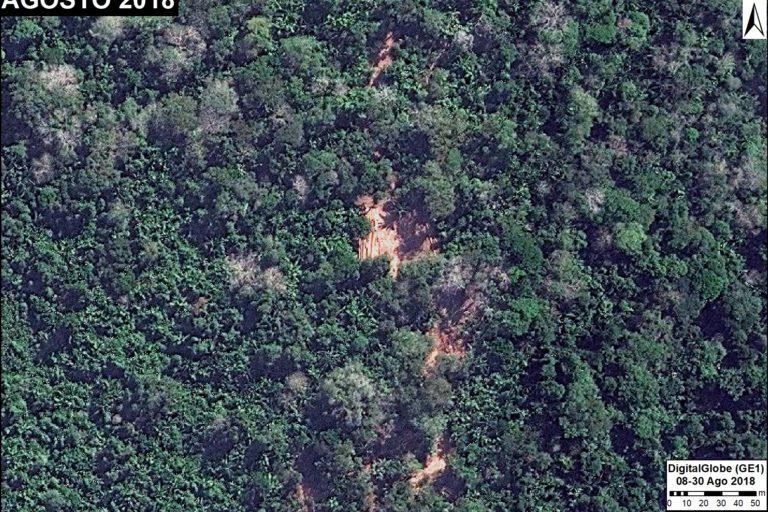 Imagen de un área de aprovechamiento forestal en la región Ucayali. Fuente: DigitalGlobe / MAAP