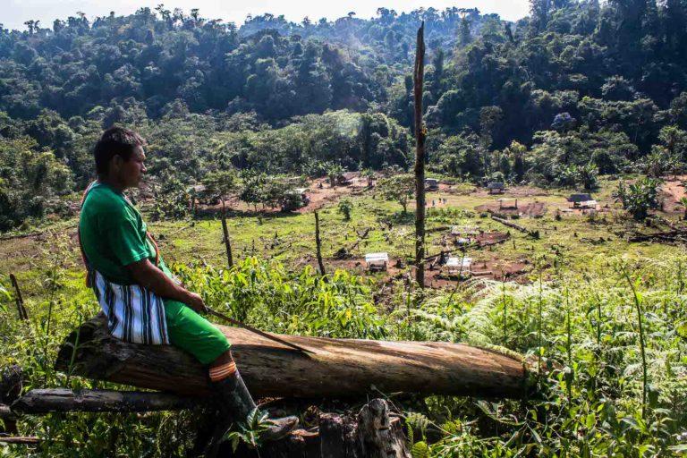 Las comunidades asháninkas se ven desprotegidas frente al crecimiento de la producción de cocaína en el VRAEM y el fortalecimiento de Sendero Luminoso. Foto:Federico Cisneros