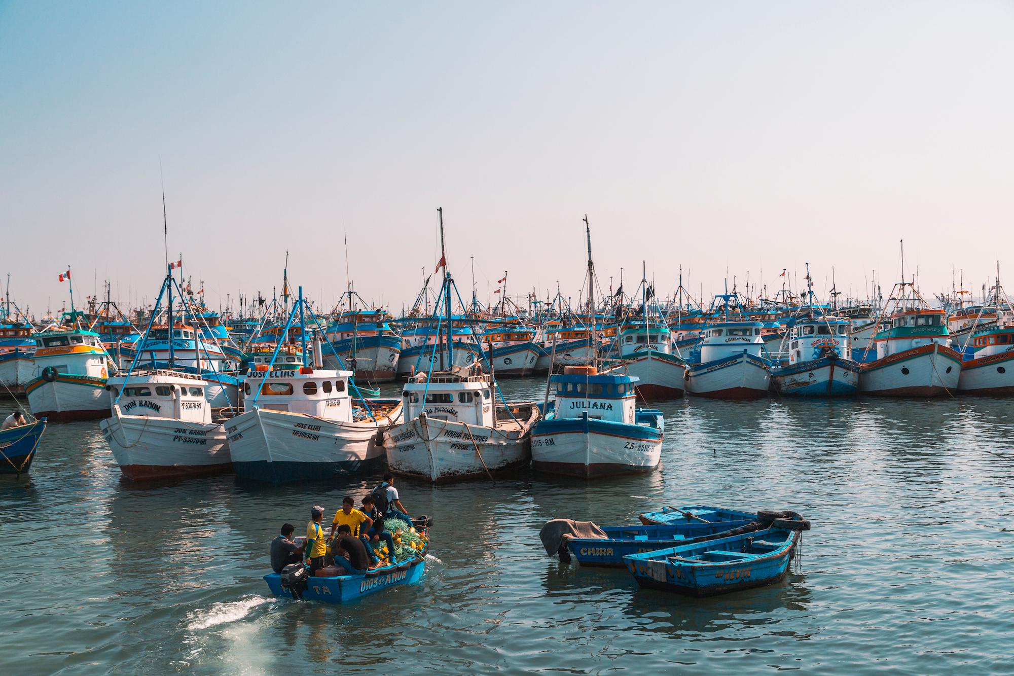 El mar de Perú se captura el 10% de toda la pesca a nivel mundial. Foto: Yawar / WWF Perú.