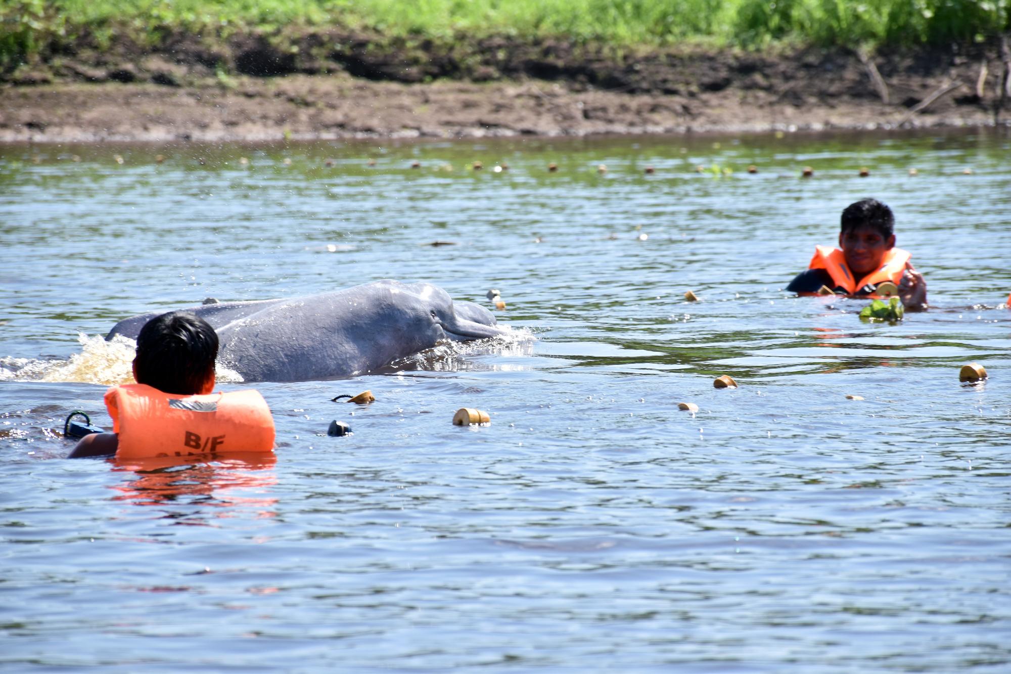 Conocemos el problema, ahora corresponde hacer algo al respecto, dicen los expertos. Foto: Jeffrey Dávila / WWF Perú.