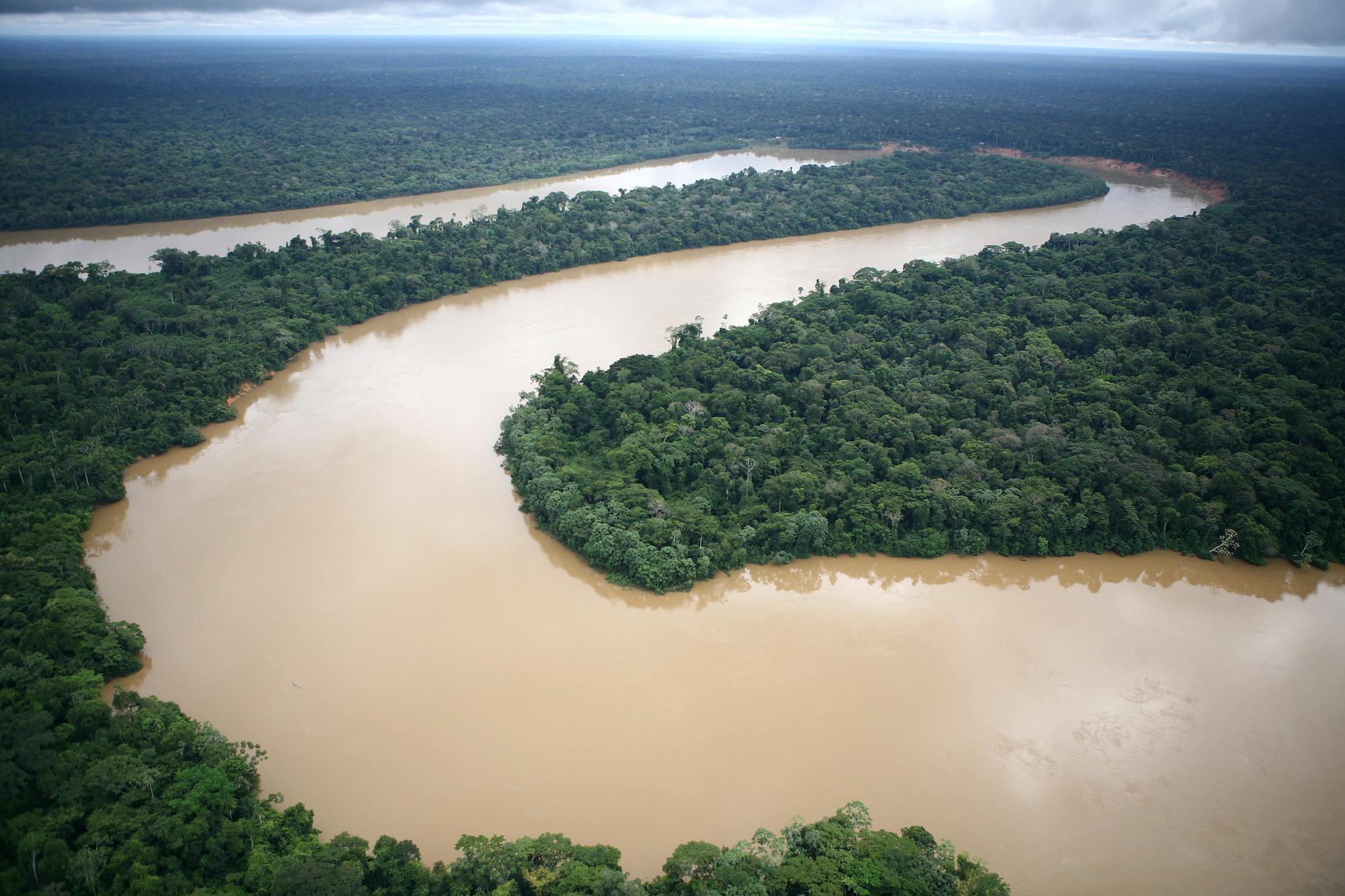La Amazonía perdió la quinta parte de su territorio en los últimos 50 años. Foto: Brent Stirton / Getty Images.