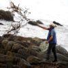 El incremento descontrolado de la pesca de algas hizo que actualmente se encuentren en una situación de alta vulnerabilidad. Foto: Sernapesca