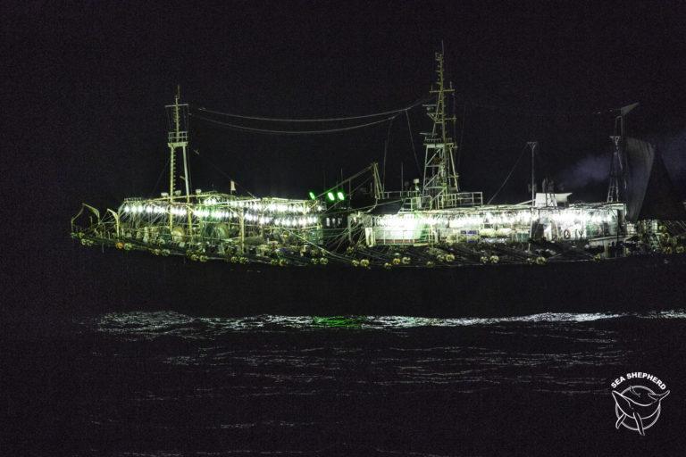 La pesca nocturna también puede ser vigilada mediante el sistema de monitoreo del Global Fishing Watch. Foto: Simon Ager / Sea Shepherd.