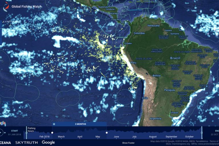 Desde octubre de 2018, cualquier persona puede visualizar la flota pesquera industrial peruana a través del portal Global Fishing Watch. Foto: GFW.