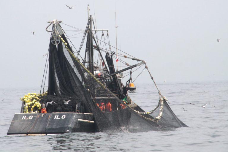 La pesca industrial también tiene su cuota en el problema de la captura incidental. Foto: Agencia Andina.