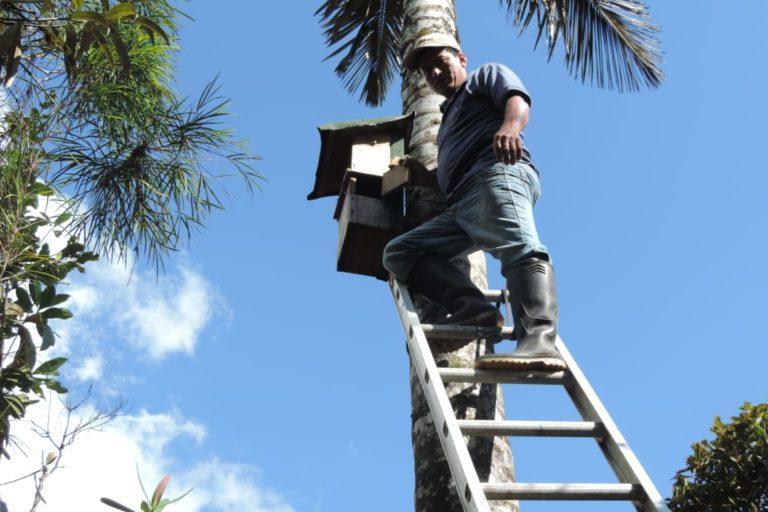 Franco Mendoza en el proyecto de nidos artificiales para periquitos. Foto: Franco Mendoza.