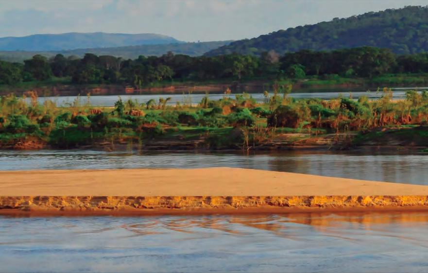 El plan de acción de Venezuela contempla realizar más investigaciones en las cuencas del Orinoco y el Amazonas. Foto: Fundación Omacha.