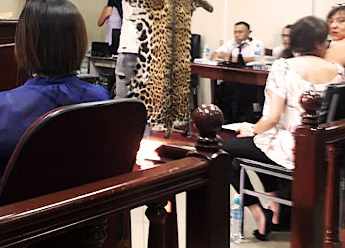 Una de las pieles decomisadas en el operativo se presenta como prueba durante el juicio. Foto: Gina Muñoz