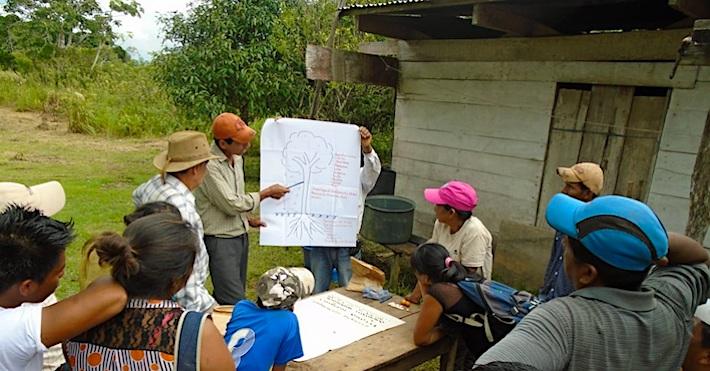 Los comunarios de Ixiamas en la capacitación sobre los sistemas agroforestales. Foto: APMT.