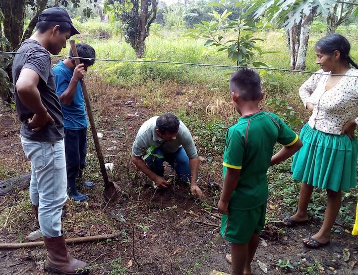 En una de las 22 comunidades de Yapacaní, donde restauraron 110 hectáreas de bosque para proteger a las comunidades ribereñas. Foto: APMT.