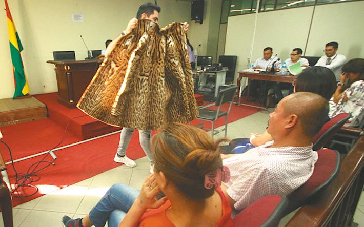Los ciudadanos chinos Li Ming y Yin Lan fueron sentenciados por tráfico de especies. Foto: Jorge Uechi.