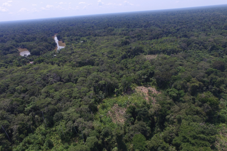 Vista panorámica de los bosques de la comunidad Vista Hermosa captadas con dron. Foto: Rainforest Foundation US.