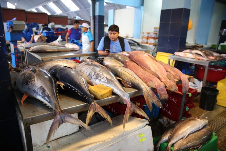 La falta de trazabilidad se evidencia en la sustitución de especies marinas que se comercializa en mercados y restaurantes. Foto: Oceana.