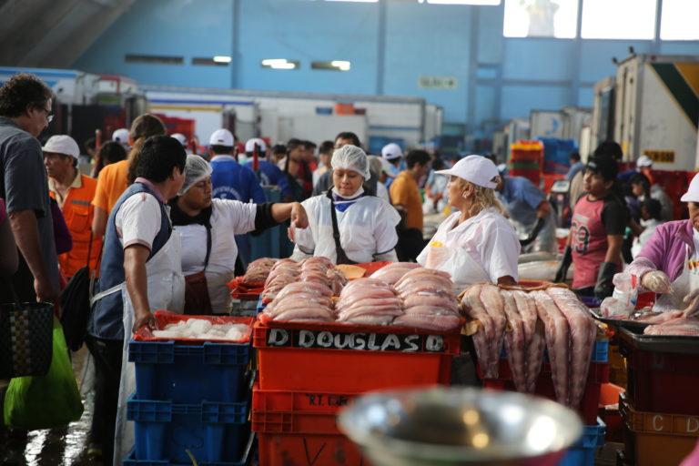 La sustitución de especies marinas llega hasta el 72% en Perú. Foto: Oceana