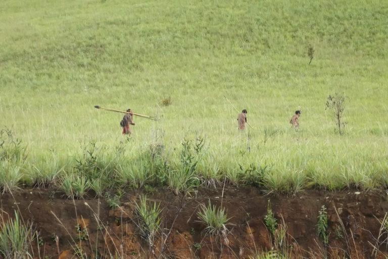Los Yanomami habitan entre la sierra Parima y el cerro Delgado Chalbaud; en el Alto Siapa, Alto Ocamo y el río Metacuni en Amazonas; y en el Alto Caura y Alto Paragua, en Bolívar. Foto: Grupo de Trabajo Socioambiental de la Amazonía Wataniba.